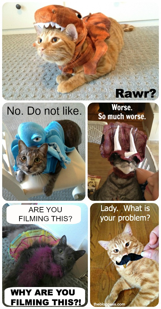 Dress your cats up with heroin.