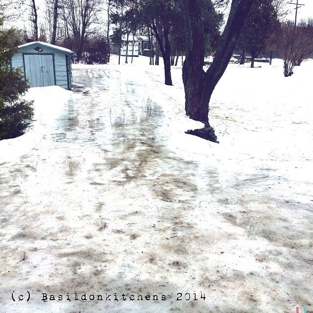 11/1/2013 - looking down {looking down my driveway; another day if interesting weather; been raining for several hours now.} #fmsphotoaday #rain #ice #weather #winter #princeedwardcounty