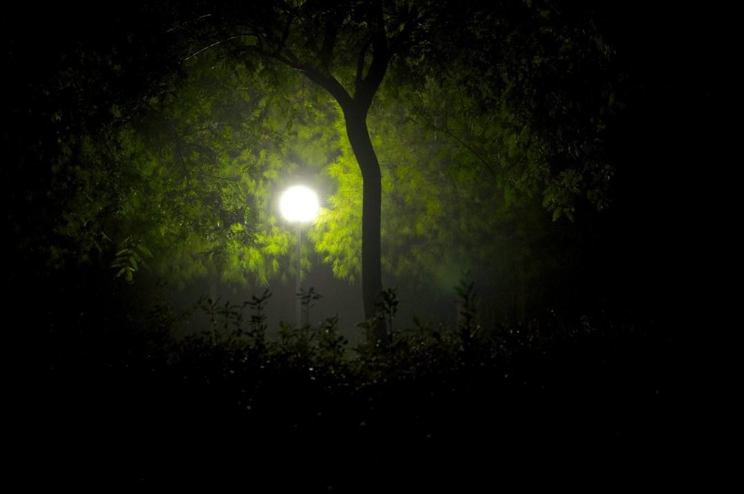 Ojo en la niebla, Autor, Tegioz