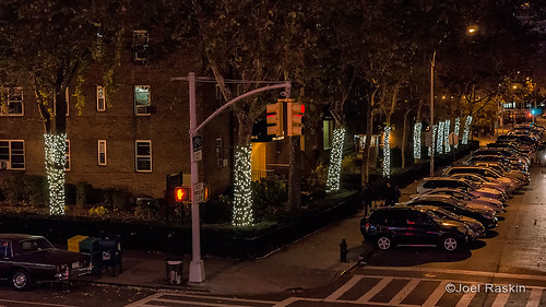 Lights & Lights by Joel Raskin