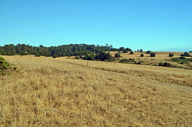 The Ridge Trail features sweeping views of the preserve.