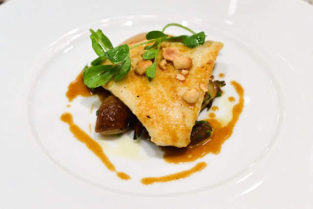 IMPORTED TURBOT wild mushroom purée, brussels sprouts & hazelnuts