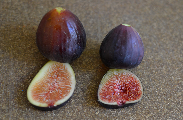 different figs
