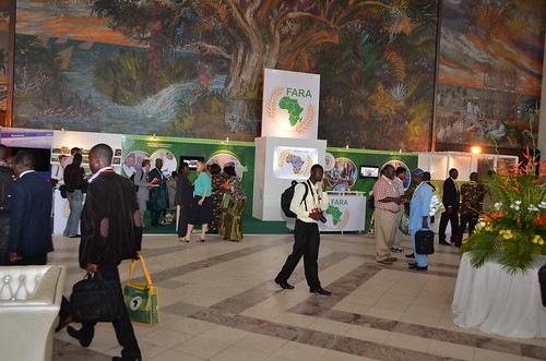 Entrance to Africa Agriculture Science Week