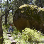 06 Viajefilos en Australia. Cathedral Rock NP 21