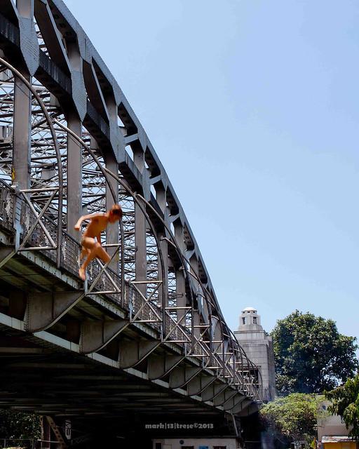 Photo bomber kid jumped on my Quezon Bridge shot