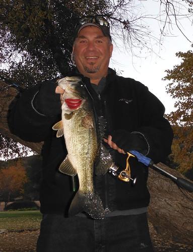 3+ Pound Bass