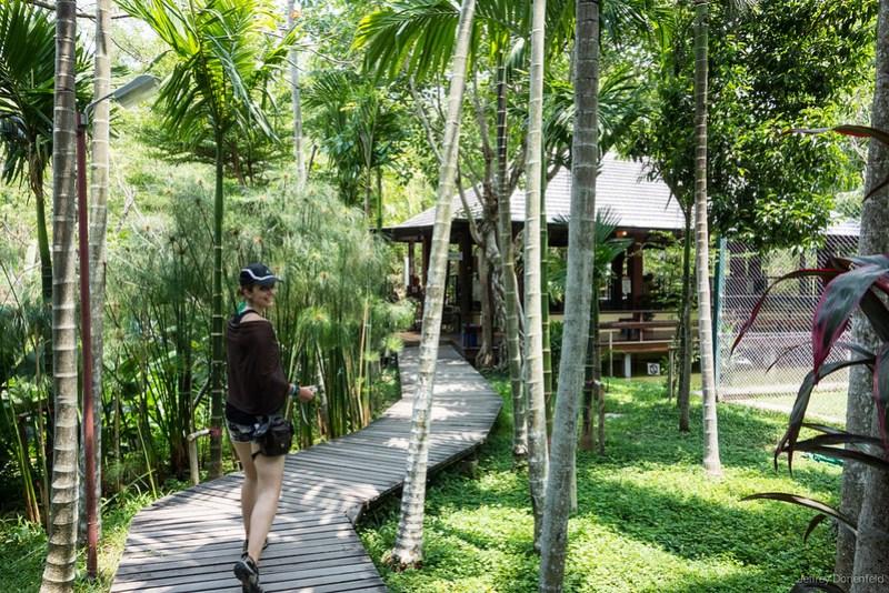 2013-05-19 Chiang Mai - DSC02710-FullWM