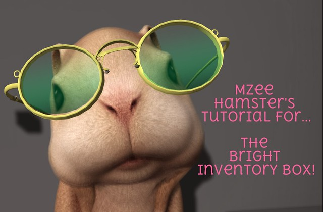 MZee Hamster explains Bright Inventory Box