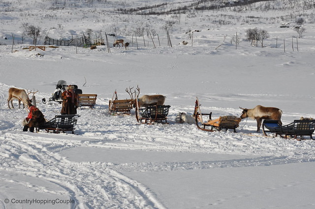 Ready for Reindeer Sledging with Sami people