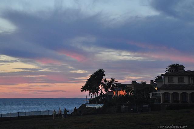 sunset_palms_web