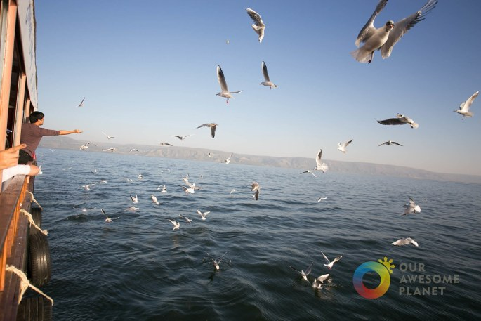 Day 3- Sea of Galilee Boat Ride - Our Awesome Planet-68.jpg
