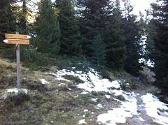 Abzweigung nach rechts, durch den Wald