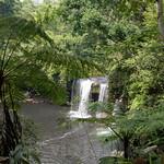 03 Viajefilos en Laos, Bolaven Plateau 15