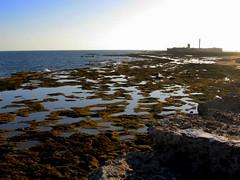 La Caleta, marea baja