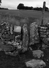 20130806-04_Squeeze Stile near  Alstonefield