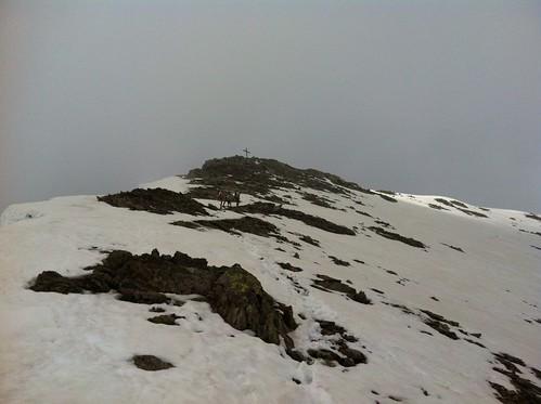 Gipfel Eidechsspitze in Sicht