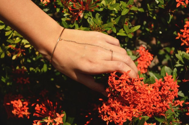 orange flowers, flowers pictures, bracelet ring, ring bracelet