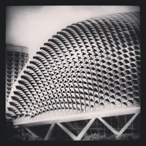 Esplanade aka Durian by @MySoDotCom
