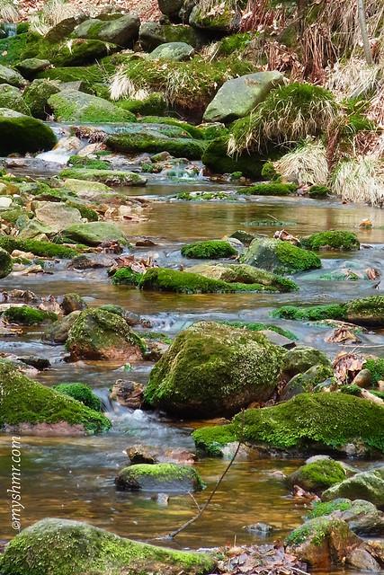 """""""Die Quelle kümmert sich nicht um die Launen des Flusses."""" — Nisargadatta Maharaj"""