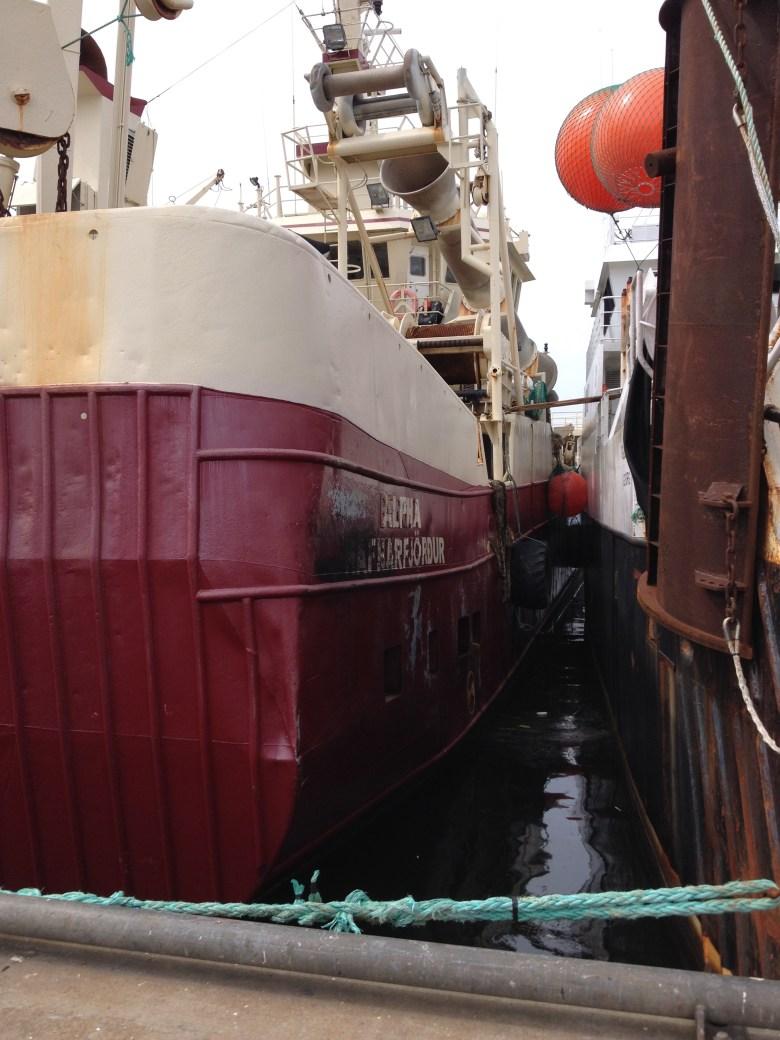 fiskeback12juli_2015 - 29