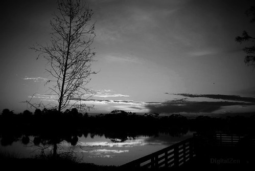 Sunset, pier, Pond Cypress by digtlzen