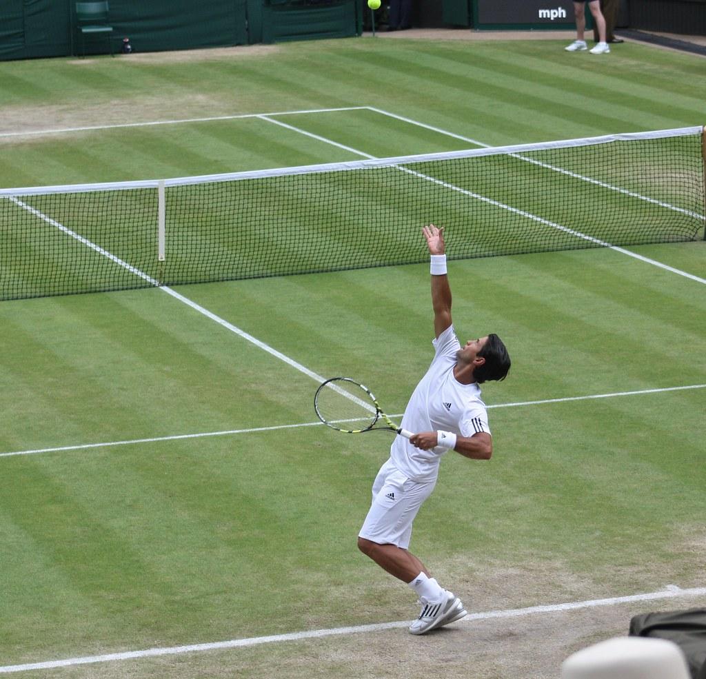Wimbledon Fernando Verdasco