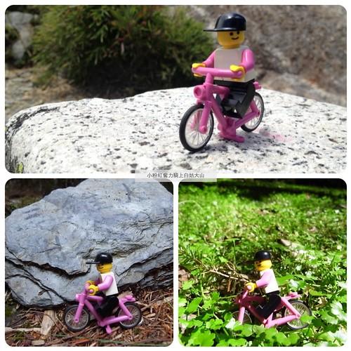 小粉紅奮力騎上白姑大山