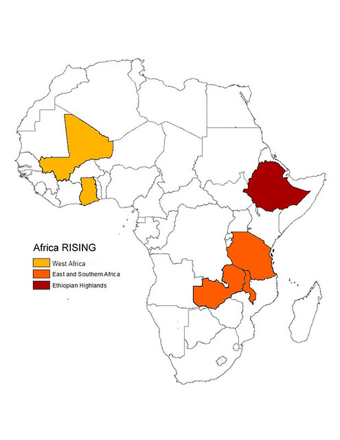 Feed the Future projects in Africa RISING