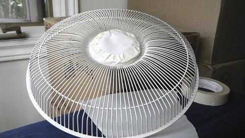 Fan of Summer 10