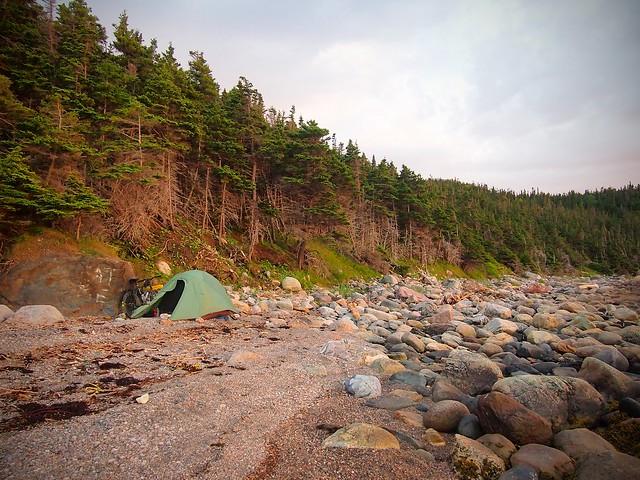 Wild Cove Camp