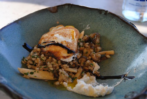 pearl barley & wild mushroom ragout with goat curd and 63 degree hen egg