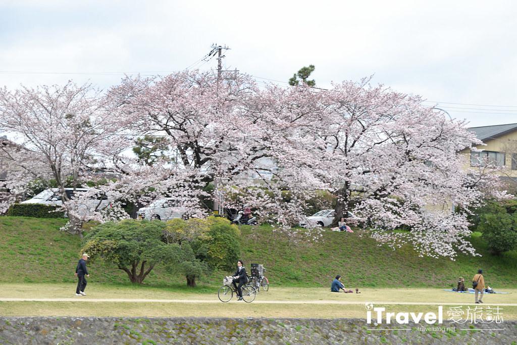 京都脚踏车出租 Rent a cycle EMUSICA (21)