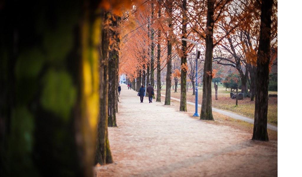 Fall Seoul State of Mind 004