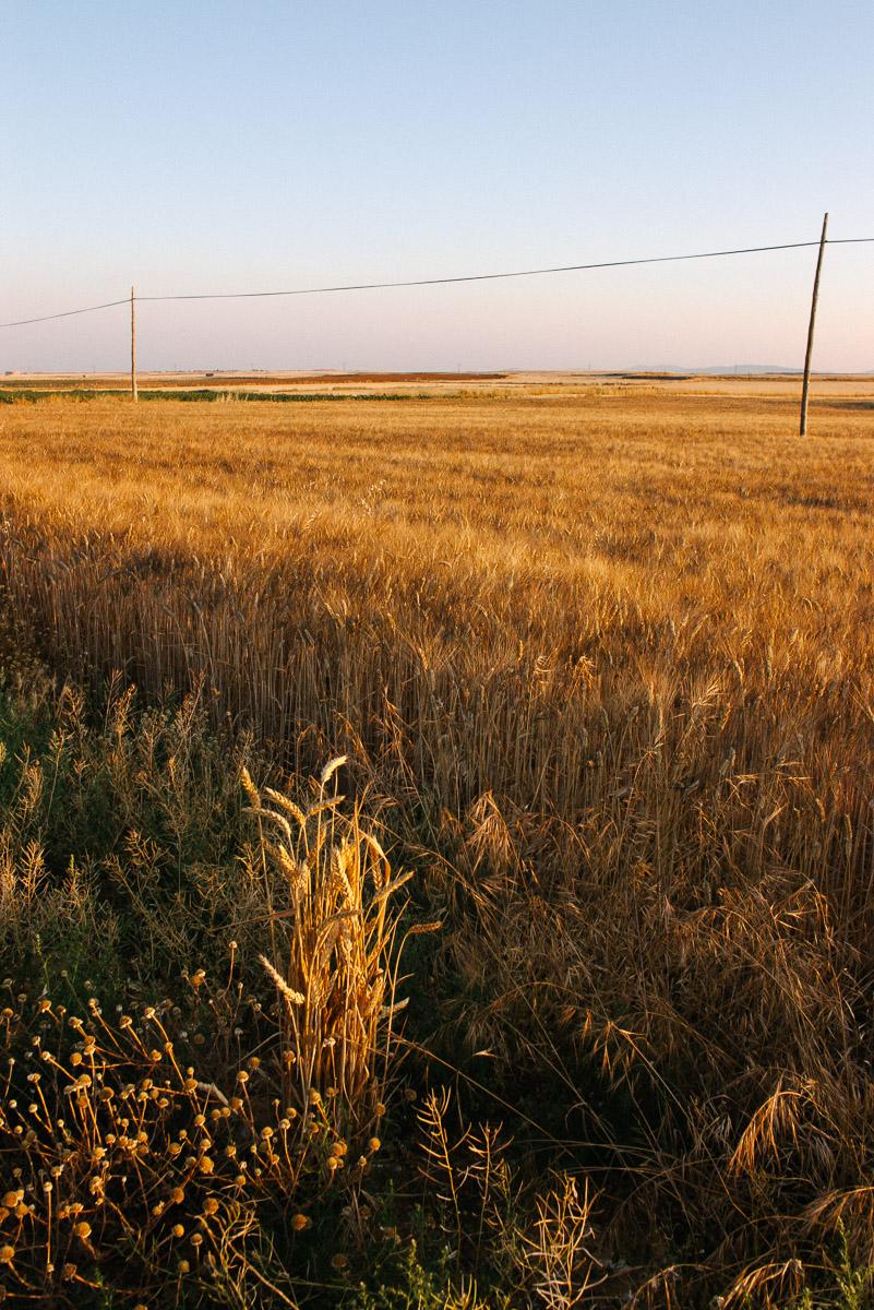 Llanos en Retascón