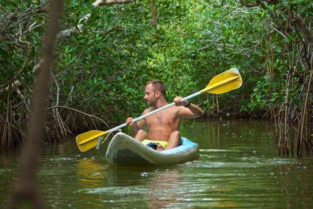 naturist 0004 mangroves, Progreso, Yucatan, Mexico