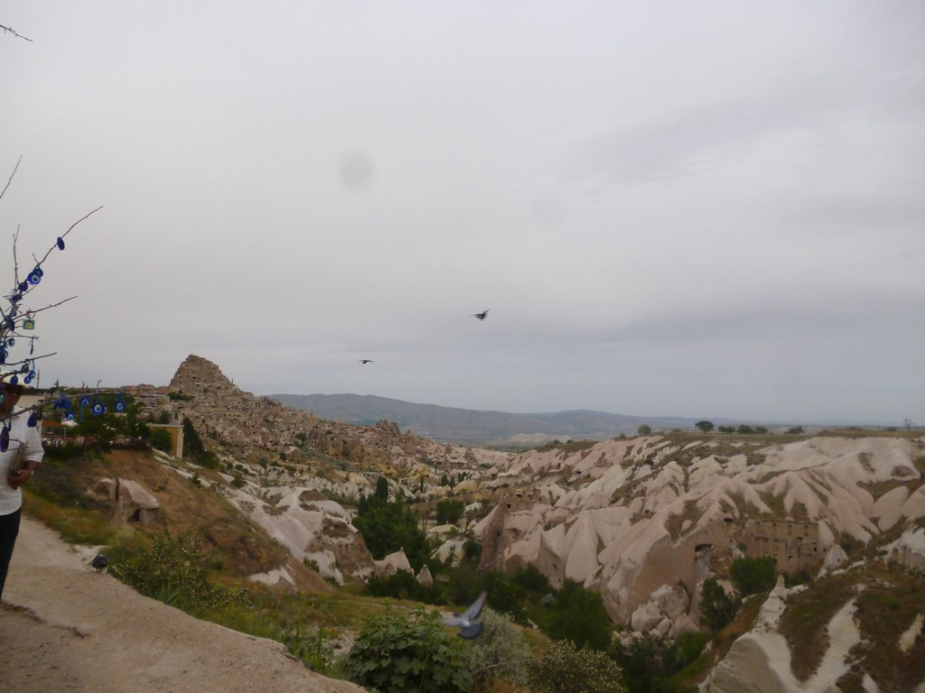 Pigeon valley panorama