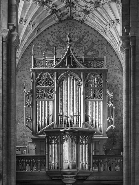 Organ in Sherborne Abbey