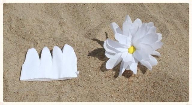 Soorten strandbloemen (5)