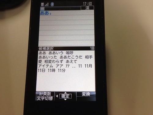 IMG_2595