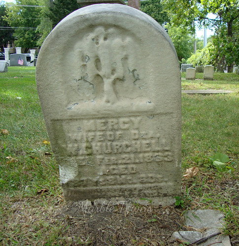 Forest Hill Cem-willow-Mercy.jpg