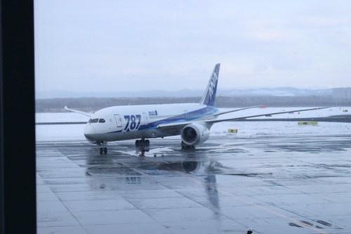787が到着