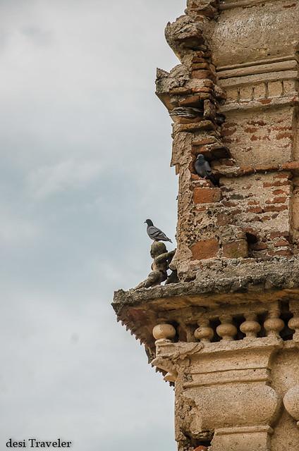 pigeons on temple top ammapalle shamshabad