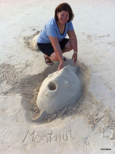 Montalut Sand art Fish 2013 (26)