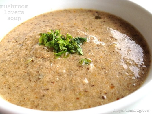 Mushroom Lovers Soup