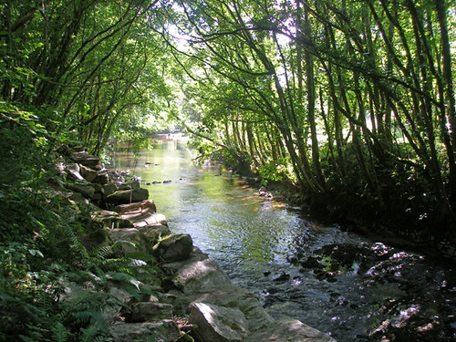 River Avon near Loddiswell