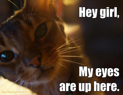 heygirl-eyes