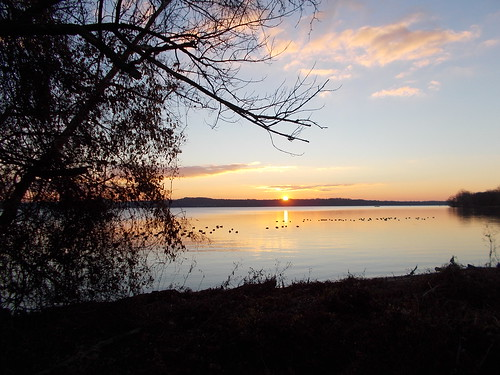 Sunrise Potomac River 12/18/2013 by Rootchopper