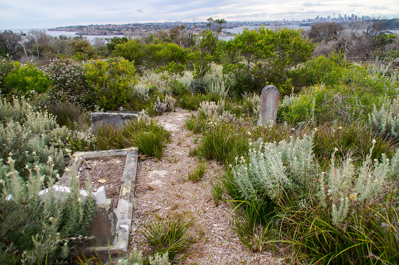 Quarantine Cemetery 4