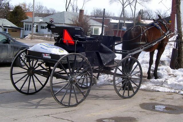 Mennonite Buggy_1766